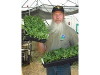 Solberg Hosta Event on July 12th